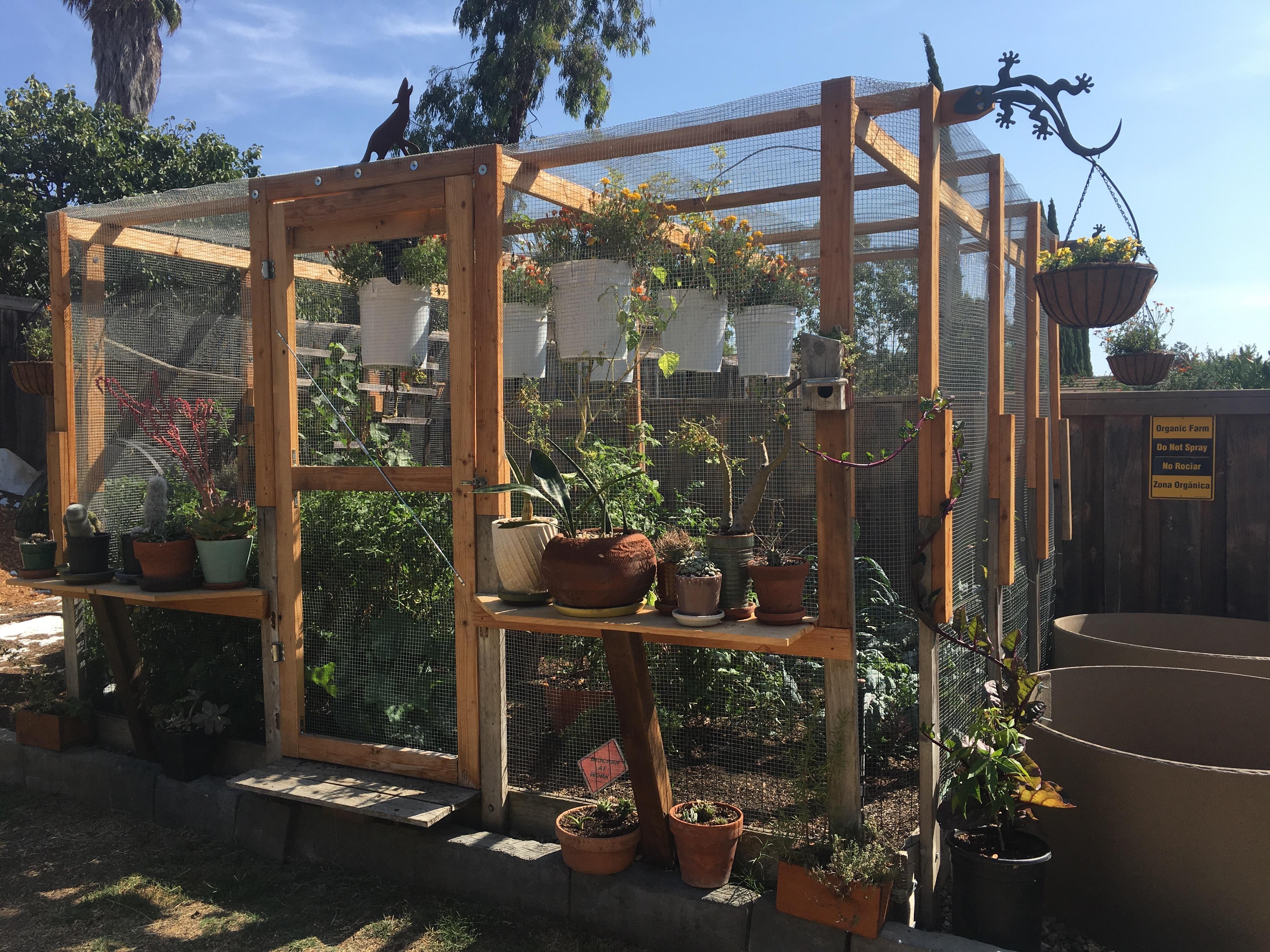 Michael Wittman garden