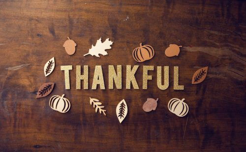 Read more about the article Thankful Tuesday: Grateful for the Garden