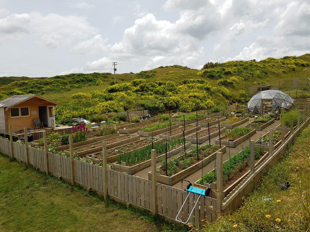 Sarah O'Neil's Garden