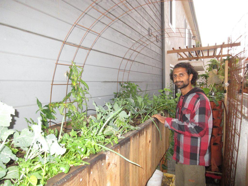 Rishi apartment garden