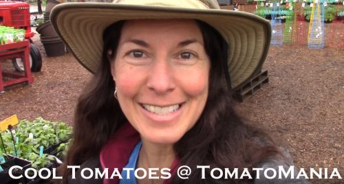 Read more about the article YouTube: Cool Tomatoes to Grow in 2020