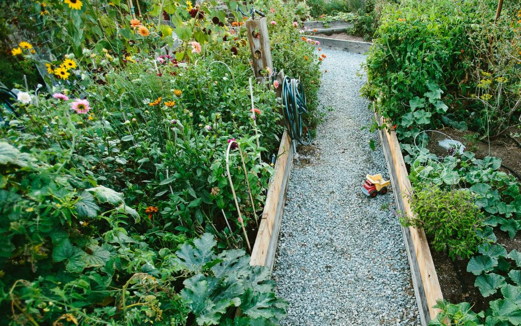 Emily Murphy Garden