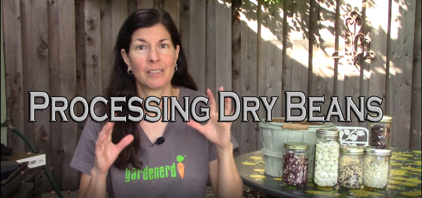 Read more about the article YouTube: Processing Dry Beans for Storage
