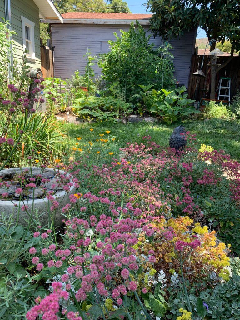 Hugelkultur veggie garden