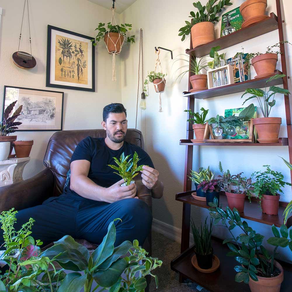 Kevin Espiritu Houseplants