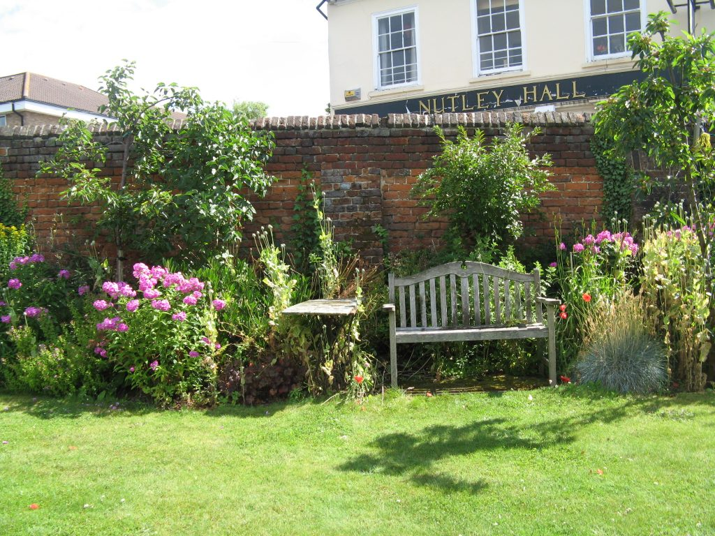 Tessa's Garden in bloom