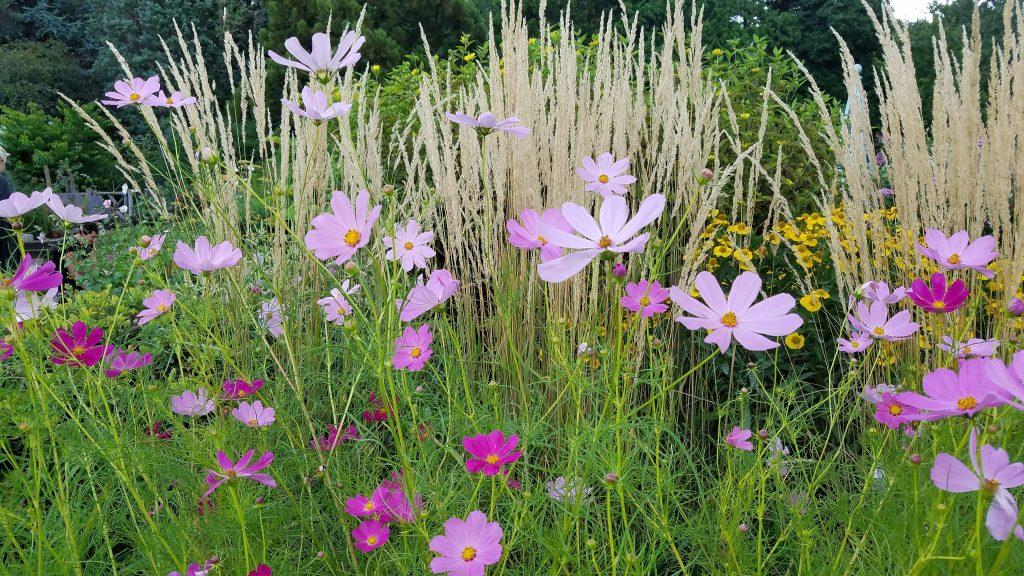flower ideas from Jan Johnsen
