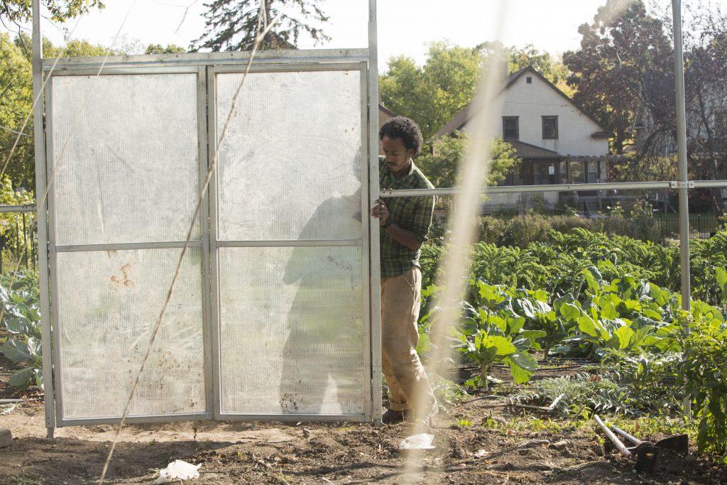 New greenhouse Tasha Powell