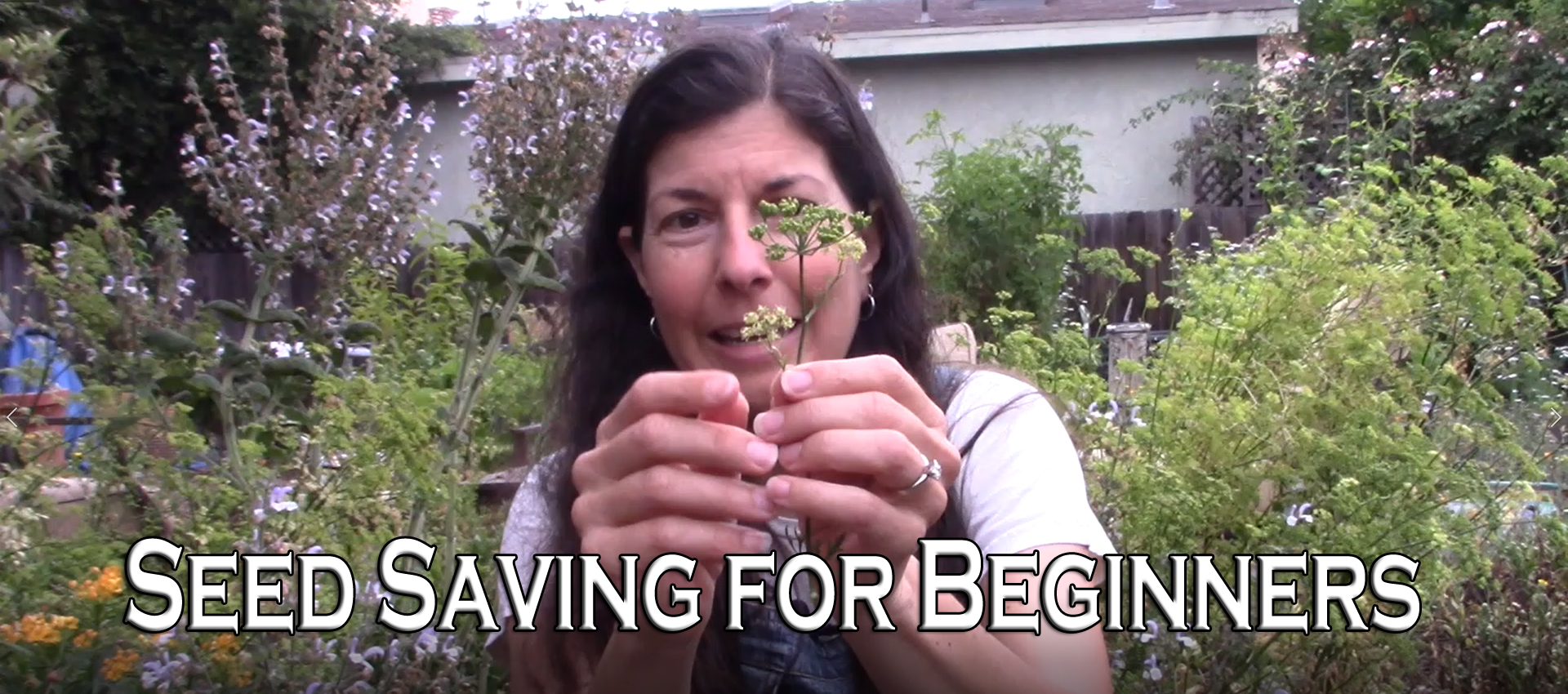 Read more about the article YouTube: Best Seeds to Save – Seed Saving for Beginners