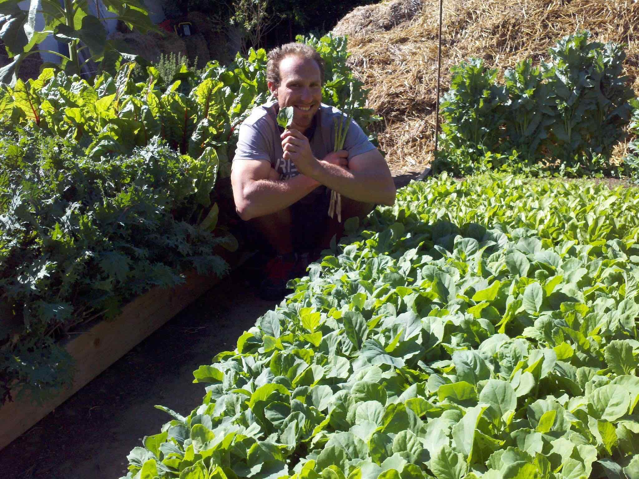 Read more about the article Podcast: Biodynamics with Steven Wynbrandt