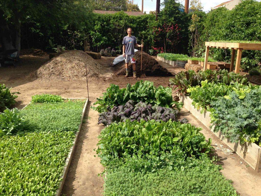 Steven Wynbrandt's Farm