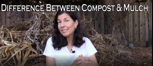 Mulch vs. compost