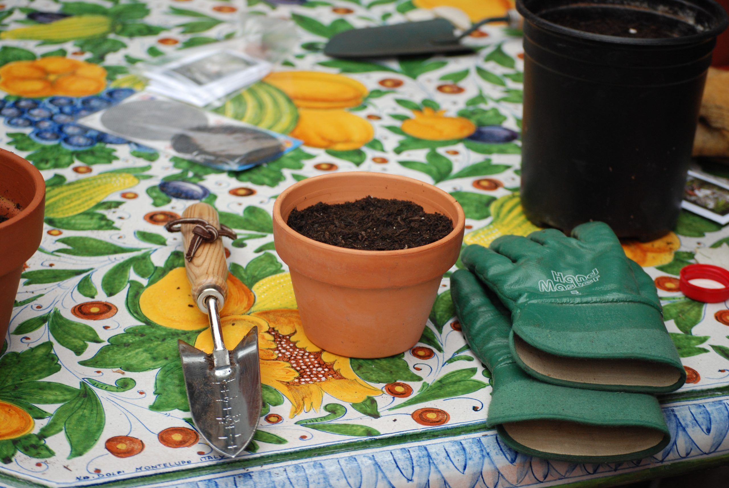 Read more about the article Class: Basic Organic Gardening 101 – Final Course at SMC!