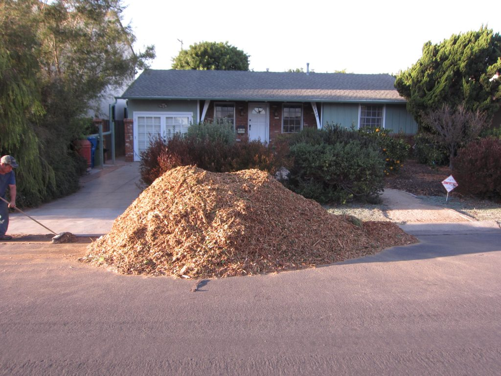 Giant pile of mulch