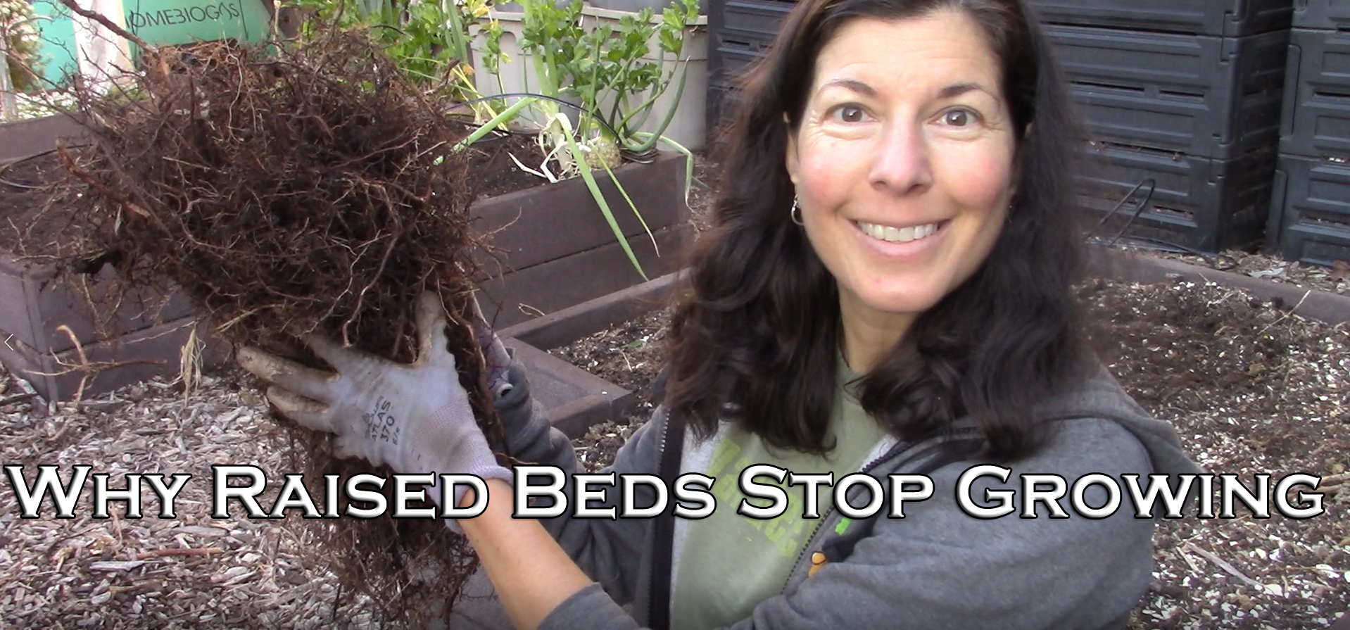 Read more about the article YouTube: Why Raised Beds Decrease in Productivity